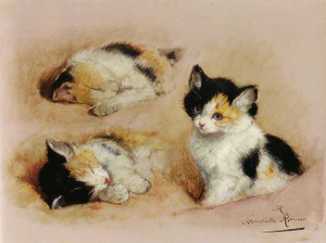 Art Prints of Studies of an Awakening Kitten by Henriette Ronner Knip