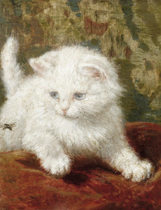 Art Prints of Curiosity by Henriette Ronner Knip