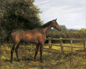 Art Prints of Whynot by Heywood Hardy
