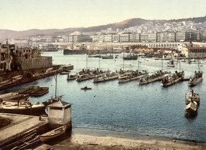 Art Prints of From the Admiralty, Algiers, Algeria (387061)