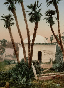Art Prints of The Cemetery with Chapel, Algiers, Algeria (387068)