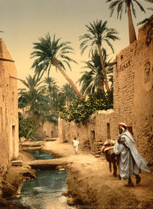 Art Prints of Street in the Old Town I, Biskra, Algeria (387109)