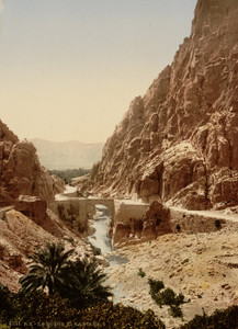 Art Prints of The Ravine I, El Kantara, Algeria (387125)