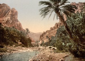 Art Prints of The River, El Kantara, Algeria (387128)
