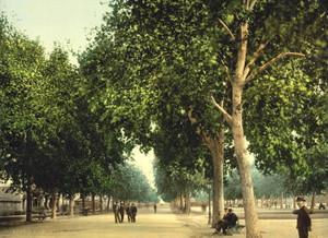 Art Prints of The Promenade, Montpelier, France (387377)