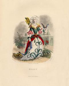 Art Prints of Carnation by J. J. Grandville