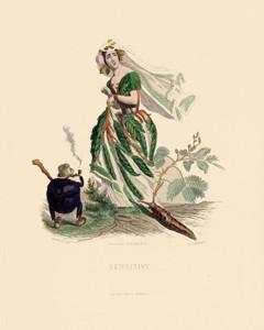 Art Prints of Mimosa by J. J. Grandville