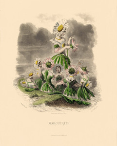 Art Prints of Marguerite Daisy by J. J. Grandville