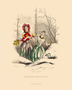 Art Prints of Primrose and Snowdrop by J. J. Grandville
