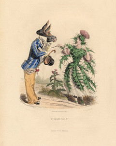 Art Prints of Thistle by J. J. Grandville