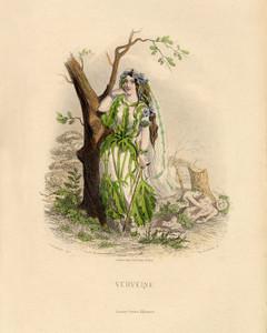 Art Prints of Verbena by J. J. Grandville