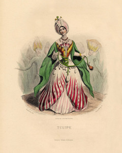 Art Prints of Tulip by J. J. Grandville