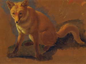 Art Prints of Study of a Fox by Jacques-Laurent Agasse