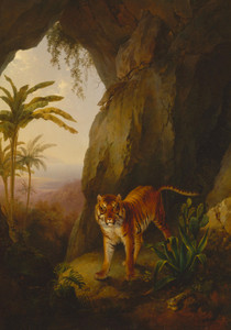 Art Prints of Tiger in a Cave by Jacques-Laurent Agasse