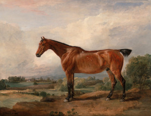 Art Prints of A Hunter in a Landscape by James Ward
