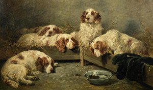 Art Prints of An Unexpected Visitor, Clumber Spaniels in a Kennel by John Emms