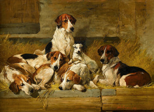 Art Prints of Foxhounds and White Terrier in a Kennel by John Emms