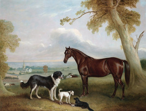 Art Prints of A Chestnut Hunter and Three Dogs by John Ferneley