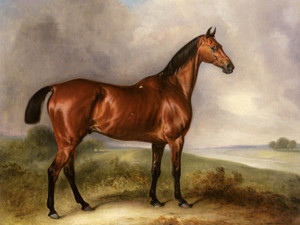 Art Prints of Bulldog, a Grey Hunter in a Landscape by John Ferneley