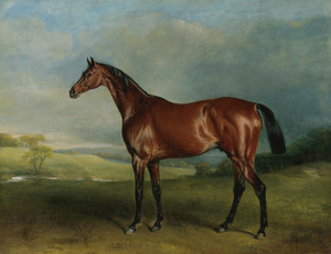 Art Prints of Rockingham, Winner of the 1833 St. Leger by John Ferneley