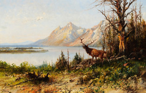 Art Prints of Elk at Jackson Lake, Wyoming by John Fery