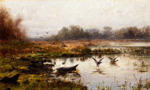 Art Prints of Mallards by John Fery