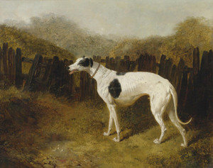 Art Prints of A Greyhound in a Landscape by John Frederick Herring