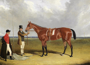 Art Prints of Bay mare Roselie by John Frederick Herring