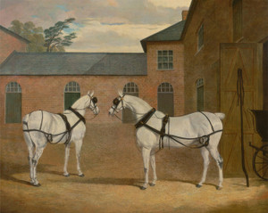 Art Prints of Grey Carriage Horses in the Coachyard by John Frederick Herring