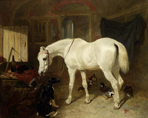 Art Prints of Old Friends by John Frederick Herring
