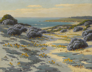 Art Prints of Bush Lupine, Poppies and Sand Dunes, Monterey by John Marshall Gamble
