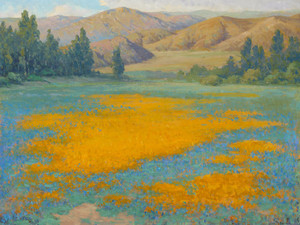 Art Prints of Shimmering Gold Poppy Field near Banning by John Marshall Gamble