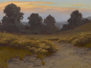 Art Prints of Wild Buckwheat at Twilight by John Marshall Gamble