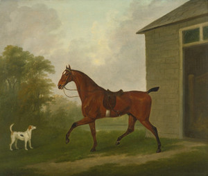 Art Prints of A Saddled Bay Hunter with a Foxhound by John Nost Sartorius