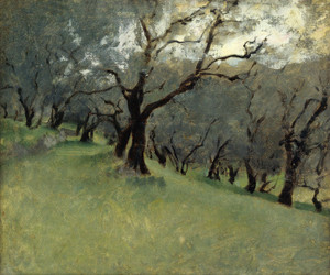 Art Prints of Olive Trees by John Singer Sargent