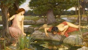Art Prints of Echo and Narcissus by John William Waterhouse