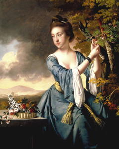 Art Prints of Elizabeth, Mrs. John Bostock by Joseph Wright of Derby