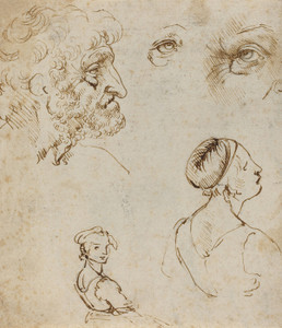 Art Prints of Sheet of Studies 1470-80 by Leonardo da Vinci