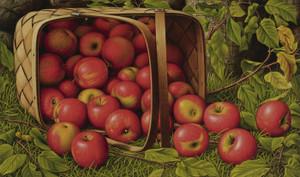Art Prints of Basket of Apples by Levi Wells Prentice