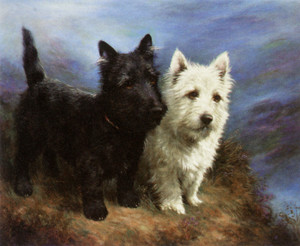 Art Prints of Scotland's Pride, Black and White Highland Terriers by Lilian Cheviot