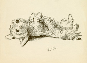 Art Prints of Bustle, Sealyham 2 by Lucy Dawson
