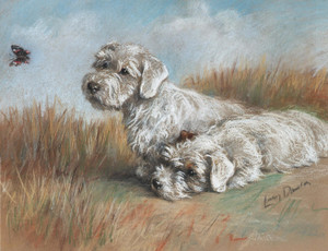 Art Prints of Curiosity, Sealyhams Watching a Butterfly by Lucy Dawson