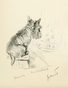 Art Prints of Fireside Meditation, Janet, West Highland Terrier by Lucy Dawson