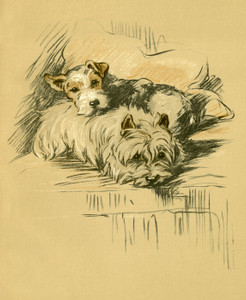 Art Prints of Malick and Woodie by Lucy Dawson