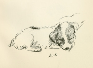 Art Prints of Mike, Terrier Puppy Sleeping by Lucy Dawson