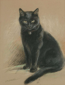 Art Prints of Portrait of a Black Cat by Lucy Dawson