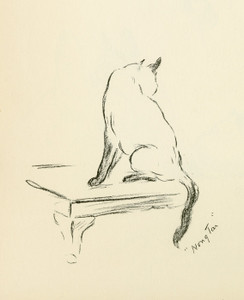 Art Prints of The Siamese Cat by Lucy Dawson
