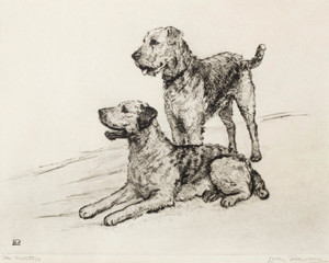 Art Prints of The Hilltop, Two Irish Terriers by Lucy Dawson
