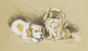 Art Prints of Two Friends, Pekingese and Terrier by Lucy Dawson