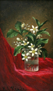 Art Prints of Orange Blossoms in a Glass by Martin Johnson Heade